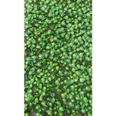 Robert Charles Expanding Trellis w/Leaves 0.9m x 1.8m