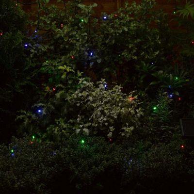 Smart Garden Multi Coloured String Lights