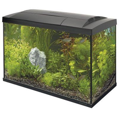 SuperFish Start 100 Tropical Kit - Black