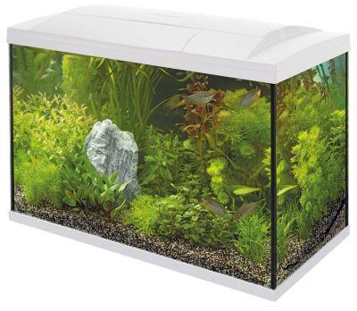 SuperFish Start 100 Tropical Kit - White