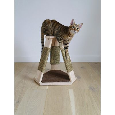 Catwalk Collection Caraway Scratcher