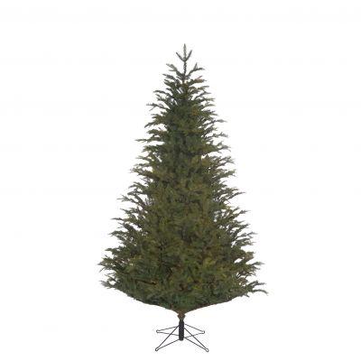 Frasier Christmas Tree 2.15m