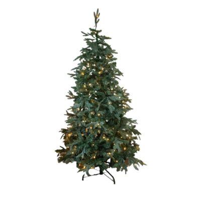 Pre Lit 6' Chessington Christmas Tree
