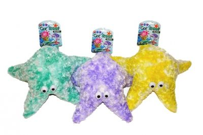 Gor Pets Gor Reef Mommy Star Fish
