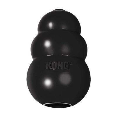 Kong Extreme Small Dog Toy