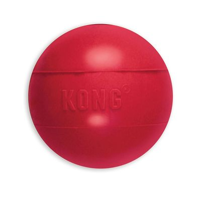 Kong Medium / Large Ball
