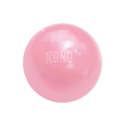 Kong Puppy Ball Small