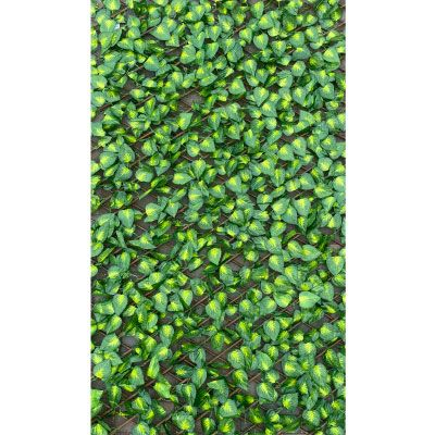 Robert Charles Expanding Trellis w/Leaves 1.5m x 1.8m
