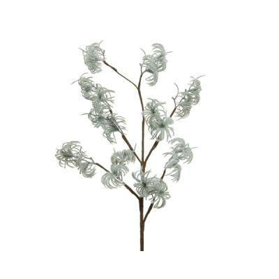 Flower on a Stem