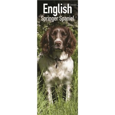 English Springer Spaniel Slim Calendar 2021