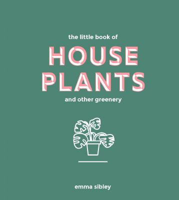 House Plants & Other Greenery