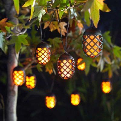 Smart Garden 10 Cool Flame Solar String Lights