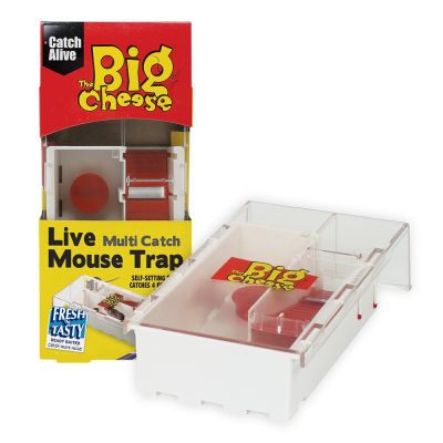 The Big Cheese Live Multi-Catch Mouse Trap