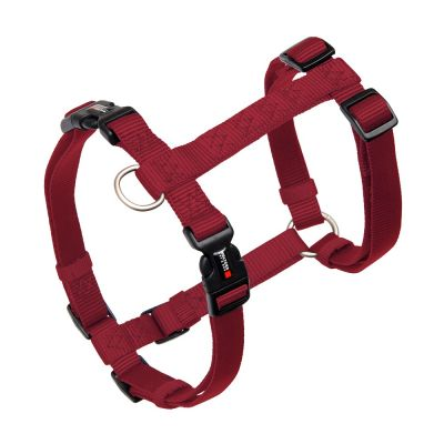 Wolters Professional Harness