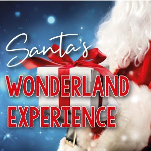 Santa's Christmas Wonderland 2020